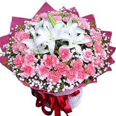 真情传递-33支粉色康乃馨