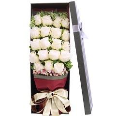 轻语-19支精品白玫瑰