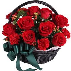 会长大的幸福-12支精品红玫瑰+8支康乃馨
