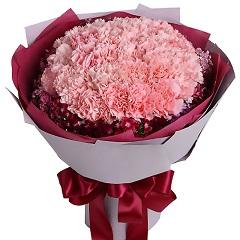 永恒的母爱-33支精品粉色康乃馨