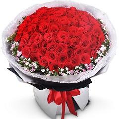 细水长流-66支精品红玫瑰