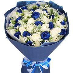 蓝色天使-33支精品混色玫瑰