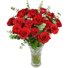 爱生活-19支精品红玫瑰