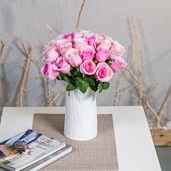 慢生活-19支精品粉玫瑰