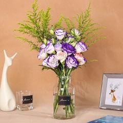 紫色梦境-6支紫色洋桔梗+2支康乃馨(送花瓶)